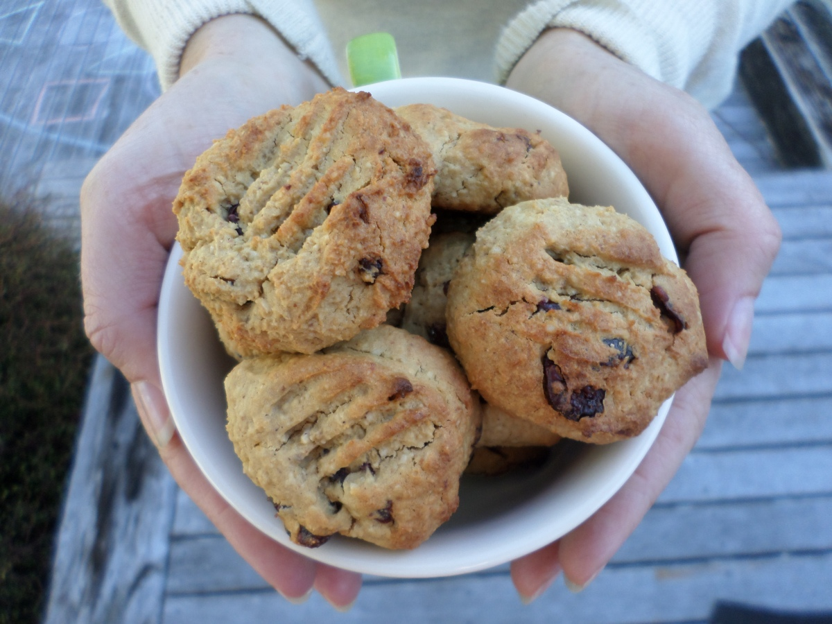 Cranberry Ninja Cookies
