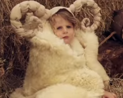 The 4 cutest nativity videos in the world! | Sacraparental.com